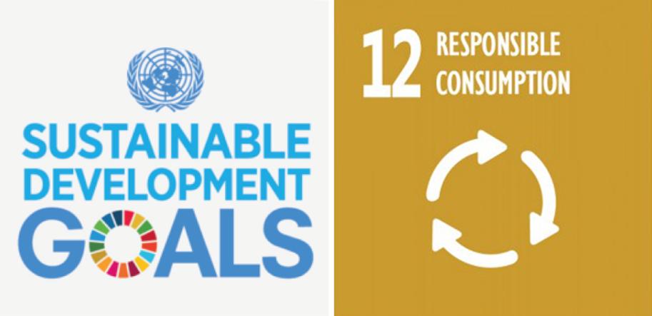 UN_SDG_12
